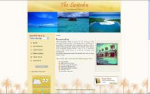 The Sun Palm
